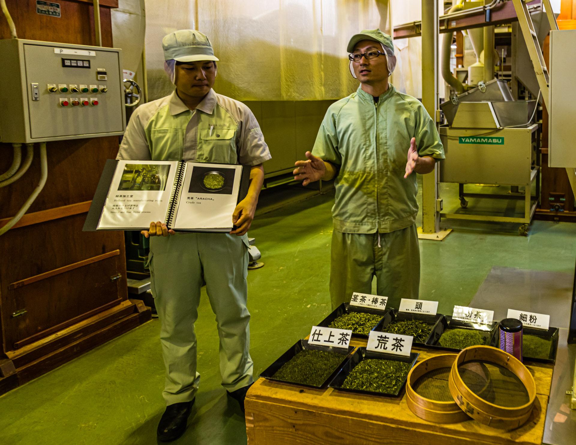 Green Tea Factory in Hamamatsu, Japan