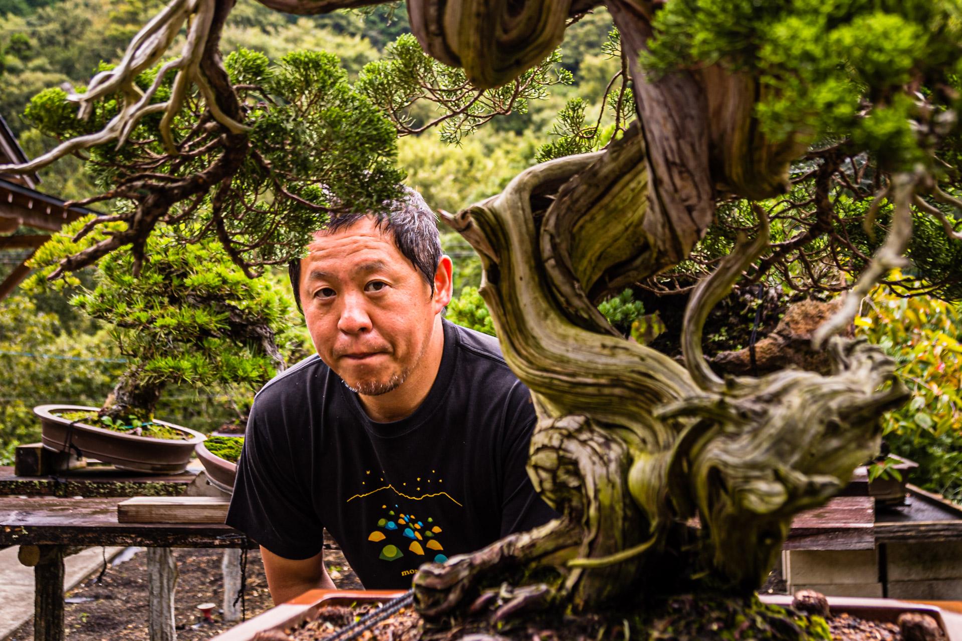 Bonsai Garden in Izu, Japan