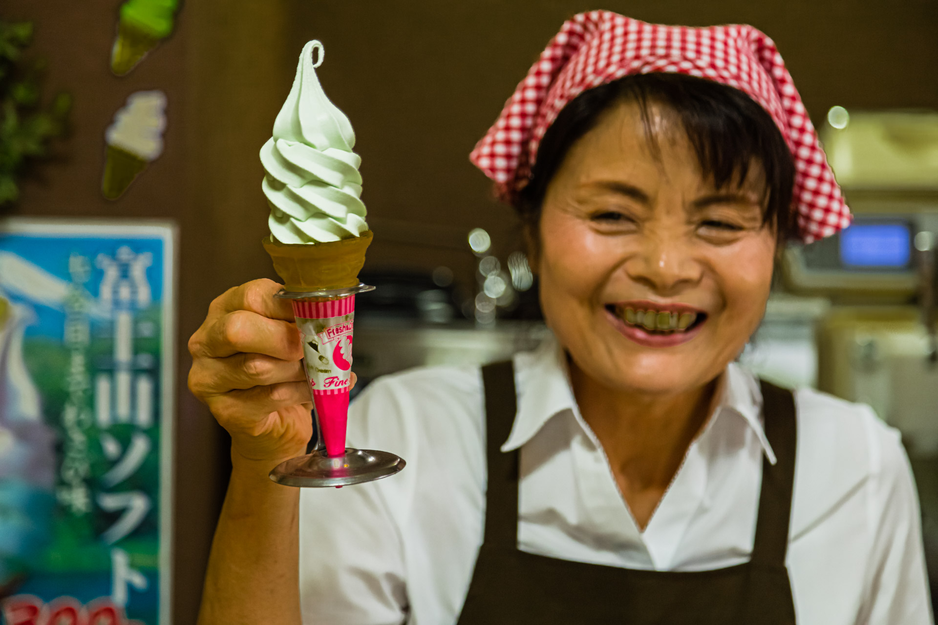 Ice Cream in Wasabi Museum, Kannami, Japan